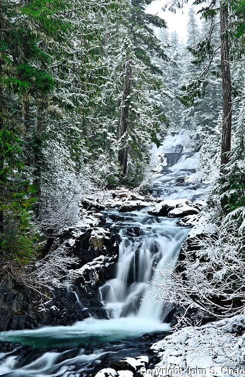 Washington Cascades Falls on the Paradise River, flows through a snowy forest in Mount Rainier National Park, Washington State