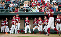 STANFORD, CA - April 23, 2011: The Stanford baseball team watches a Kenny Diekroeger popup from the dugout during Stanford's game against UCLA at Sunken Diamond. Stanford won 5-4.
