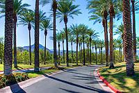 Palm Desert; Ca; Golf Course; Golf; Resort; Palm; Desert; Ca;