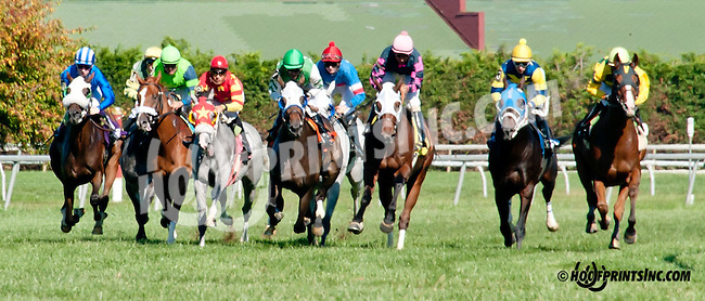 Rose Brier winning at Delaware Park on 9/23/13