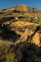 Europe, Espagne, Navarre, env d'Arguedas: Parc Naturel des Bardenas Reales, Blanca Baja,  // Europe, Spain, Navarre, near Arguedas: Bardenas Reales Natural Park,White Bardena,