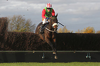 Race winner Honest John ridden by Tom Scudamore in jumping action during the TurfTV Novices Handicap Chase
