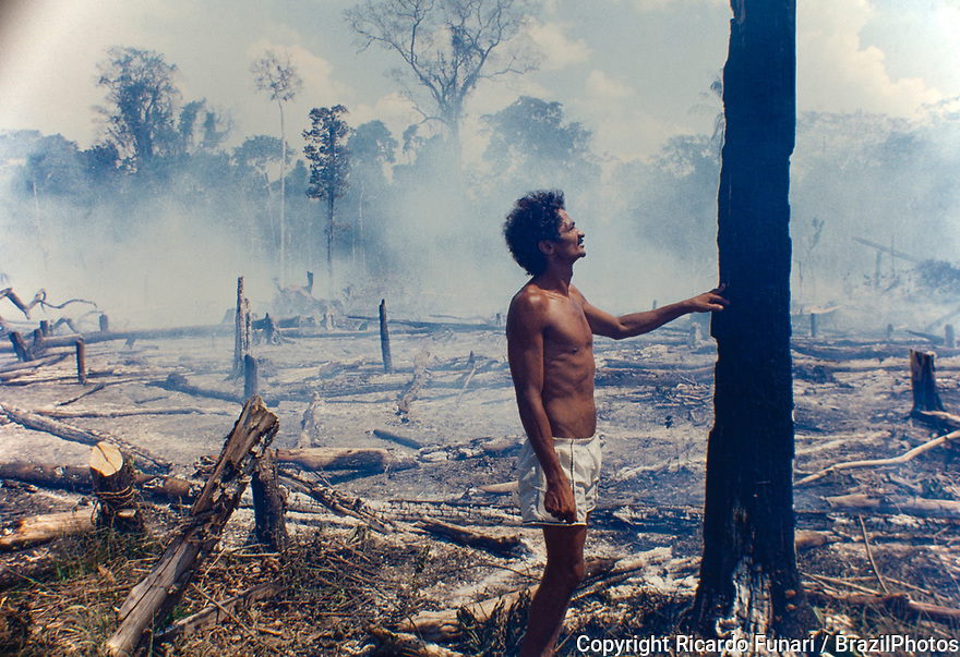 Logging, Amazon deforestation, slashed-and-burned patch of forest at Acre State, Brazil.