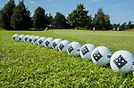 DEN DOLDER - Puttinggreen. Golfsocieteit De Lage Vuursche. COPYRIGHT KOEN SUYK
