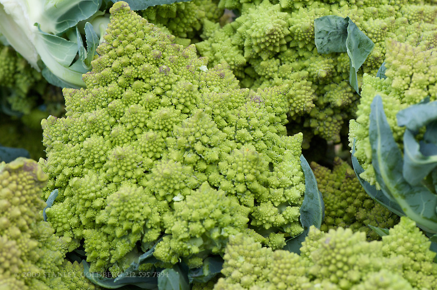 The Romanesco broccoli is seldom seen in a supermarket. They taste much like cauliflower,