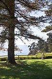 USA, California, Big Sur, Esalen, a woman strolls on the lawn by the Lodge in front of the Pacific Ocean, the Esalen Institute