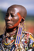 Lolgorian, Kenya. Siria Maasai Manyatta; elder woman wearing traditional beadwork decorations, earrings, extended ear piercing