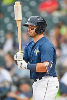 Catcher Scott Manea (25) of the Columbia Fireflies waits in the on deck circle during a game against the Greenville Drive on Sunday, May 27, 2018, at Spirit Communications Park in Columbia, South Carolina. Greenville won, 3-0. (Tom Priddy/Four Seam Images)