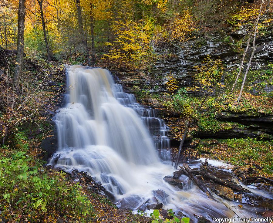 Ricketts Glen State Park, PA: Erie Falls on Kitchen Creek in autumn
