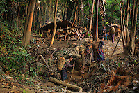 Ethnic Hmong women return from the jungle with baskets full of roots to be eaten in the Vientiane province of Laos on 28 November 2007. Thousands of Hmongs who fought or collaborated with the American CIA until communists took over the country in 1975 remain hidden in the jungles of Laos and are regular targets of the Lao People's Army