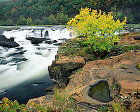 Sandstone Falls in the fall on New River; New River Gorge National River, WV..