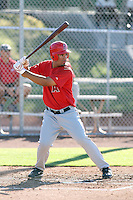 Angel Castillo - Los Angeles Angels, 2009 Instructional League.Photo by:  Bill Mitchell/Four Seam Images..