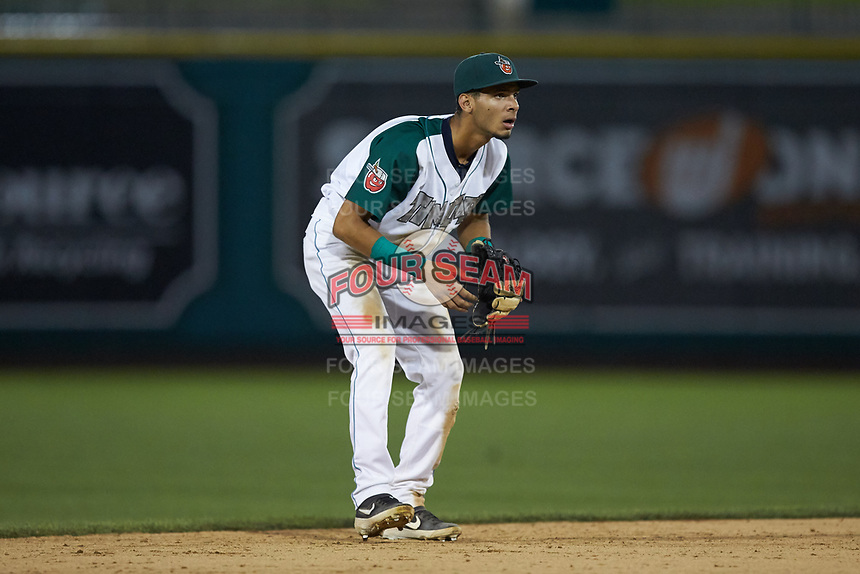 Fort Wayne TinCaps shortstop Tucupita Marcano (15) on defense against the Bowling Green Hot Rods at Parkview Field on August 20, 2019 in Fort Wayne, Indiana. The Hot Rods defeated the TinCaps 6-5. (Brian Westerholt/Four Seam Images)