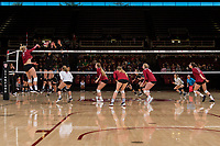 STANFORD, CA -- November 5, 2017. <br /> The Stanford Cardinal women's volleyball defeats the Oregon Ducks 3-0 at Maples Pavilion.