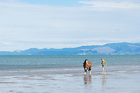 female walking horse along empty beach