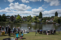Maidenhead, United Kingdom. &quot;Single&quot; moving past the spectators enclosure. &quot;Thames Punting Club Regatta&quot;, Bray Reach.<br /> 13:31:26 Sunday  06/08/2017<br /> <br /> [Mandatory Credit. Peter SPURRIER Intersport Images}.<br /> <br /> LEICA Q (Typ 116) 28mm  f1.7   1/10000 /sec    100 ISO River Thames, .......... Summer, Sport, Sunny, Bright, Blue Skies, Skilful,