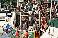 Quahog fisherman off-loading the days catch, Rock Harbor, Orleans, Cape Cod, Massachusetts, USA