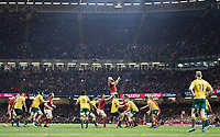 Wales' Jake Ball claims the lineout<br /> <br /> Photographer Simon King/CameraSport<br /> <br /> International Rugby Union - 2017 Under Armour Series Autumn Internationals - Wales v Australia - Saturday 11th November 2017 - Principality Stadium - Cardiff<br /> <br /> World Copyright &copy; 2017 CameraSport. All rights reserved. 43 Linden Ave. Countesthorpe. Leicester. England. LE8 5PG - Tel: +44 (0) 116 277 4147 - admin@camerasport.com - www.camerasport.com