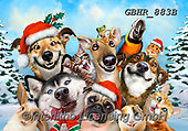 Howard, SELFIES, paintings+++++,GBHR883B,#Selfies#, Christmas,#xa#