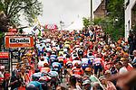 The peloton climb Mur de Huy for the 2nd time during the 2019 La Fleche Wallonne, Belgium, 24 April 2019, Photo by Thomas van Bracht / PelotonPhotos.com / Cyclefile