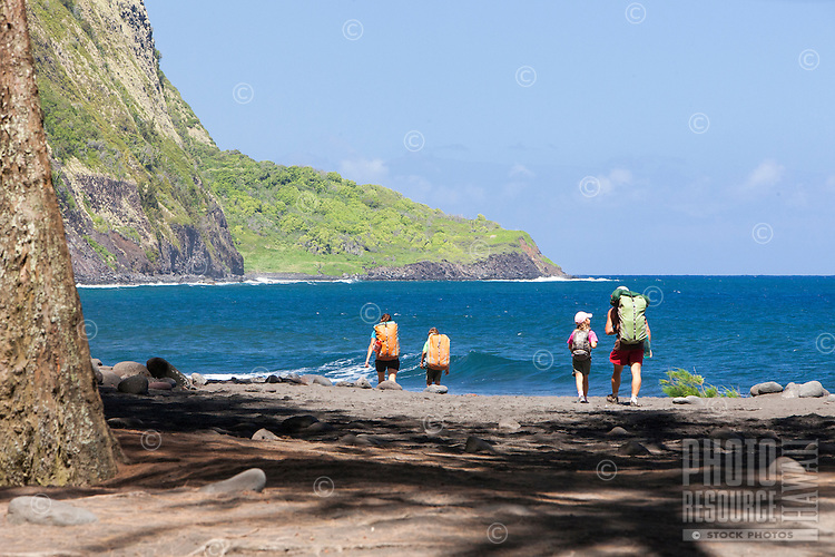 Family hiking with backpacks along the beach in Waipi'o Valley, Big Island.