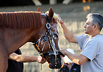 LOUISVILLE, KY -MAY 10: Kentucky Derby winner Justify is bathed by Eduardo Luna after galloping at Churchill Downs, Louisville, Kentucky. It was his first visit to the track since his Kentucky Derby win five days earlier. (Photo by Mary M. Meek/Eclipse Sportswire/Getty Images)