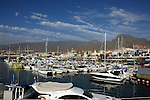 Yachts and boats moored at Puerto Colon Harbour, Playa de las Americas, Tenerife, Canary Islands