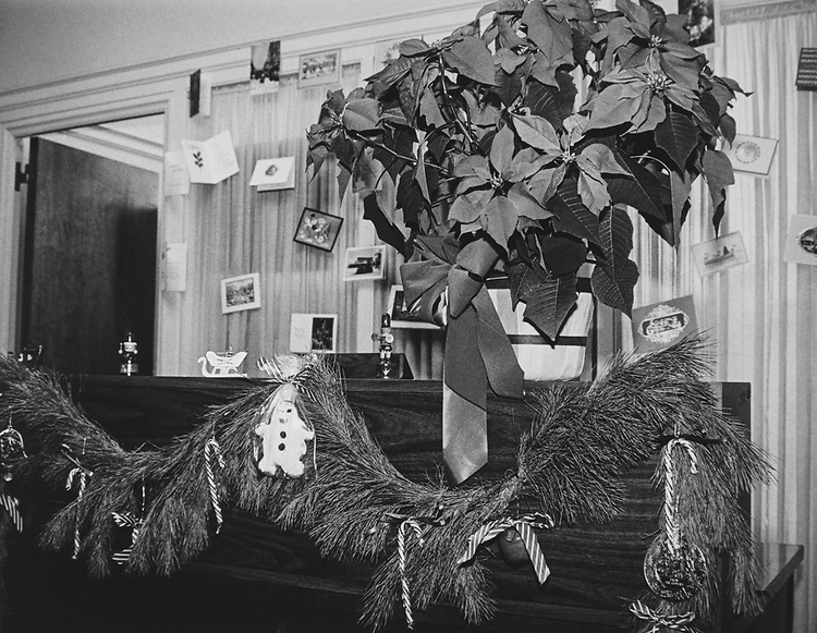 Decorated office of Rep. Gillespie V. Montgomery, D-Miss., during Christmas contest in 1983. (Photo by CQ Roll Call via Getty Images)