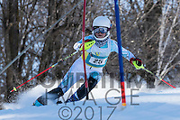 2017 Section 4 Alpine Ski Meet - PM Run