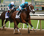 "ARCADIA, CA: October 06: #2 Roy H ridden by  Paco Lopez runs away to win the Breeders Cup ""Win and You're In Sprint Division in the Santa Anita Sprint Championship at Santa Anita Park on October 06, 2018 in Arcadia, California (Photo by Chris Crestik/Eclipse Sportswire)"