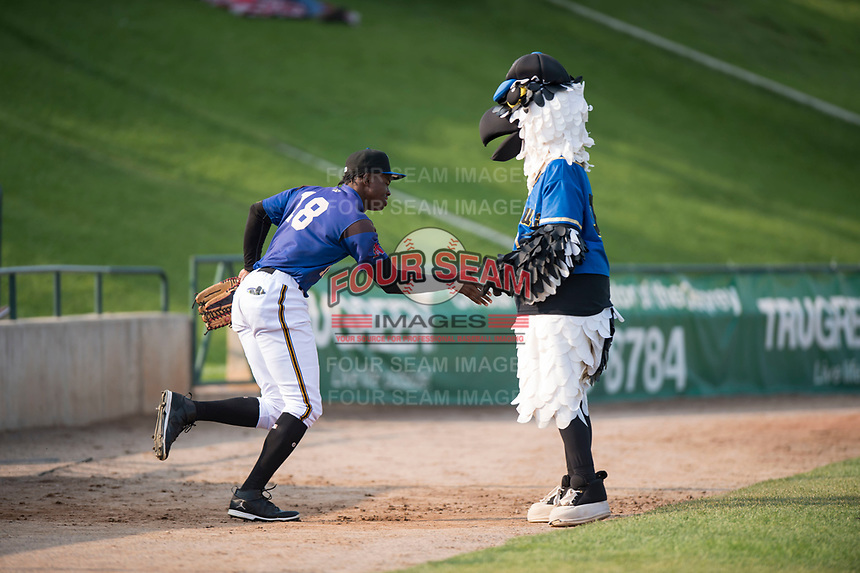 Missoula Osprey left fielder Kristian Robinson (18) gets a high five from Ollie Osprey before a Pioneer League game against the Grand Junction Rockies at Ogren Park Allegiance Field on August 21, 2018 in Missoula, Montana. The Missoula Osprey defeated the Grand Junction Rockies by a score of 2-1. (Zachary Lucy/Four Seam Images)