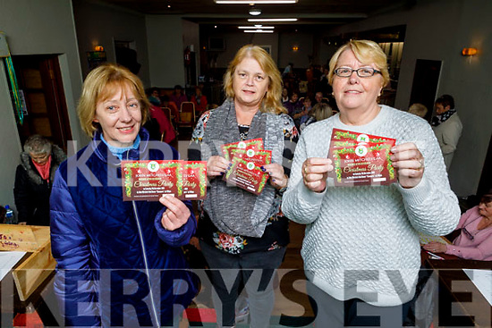 John Mitchell GAA Club Boherbue who are launching the Active Retirement Christmas party in Chamfers on Friday night.<br /> L to r: Nuala O'Brien, Sandra Byrne and Hannah Lynch