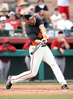 Pat Burrell #5 of the San Francisco Giants bats against the Arizona Diamondbacks in the first spring training game of the season at Scottsdale Stadium on February 25, 2011  in Scottsdale, Arizona. .Photo by:  Bill Mitchell/Four Seam Images.