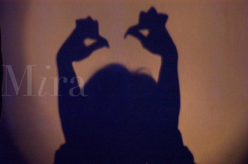 Shadow performer makes chickens with his hands - Chengdu, China in Sichuan Province