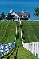 Manchester horse farm, Lexington, Kentucky (Editorial Use Only) (No Property Release)