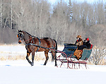 Northwoods Harness Club Sleigh and Cutter Rally held Jan. 10, 2009 at the Northern Great Lakes Visitors Center, Ashland, in northern Wisconsin. Dozens of entries and hundreds of spectators.