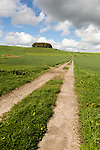 Path leading towards chalk scarp slope at Furze Knoll, Morgan's Hill, Marlborough Downs, Wiltshire, England, UK