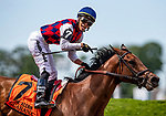 JUNE 08: Jose Ortiz celebrates aboard Guarana as they win the Acorn Stakes at Belmont Park in Elmont, New York on June 07, 2019. Evers/Eclipse Sportswire/CSM