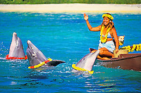 Three lei-draped dolphins perform for a waving Polynesian woman dressed in local attire and plumeria lei on a boat at Sea Life Park. A small dog also adorned with a plumeria lei adds humor.