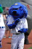 Omaha Storm Chasers mascot, Casey, performs prior to the game against the El Paso Chihuahuas at Werner Park on May 30, 2016 in Omaha, Nebraska.  El Paso won 12-0.  (Dennis Hubbard/Four Seam Images)