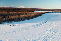 A dog teams runs down the Yentna River about to arrive at the Yentna checkpoint with Denali in the background a few hours after leaving the Restart of the 2016 Iditarod in Willow, Alaska.  March 06, 2016.