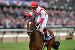 November 2, 2018: Newspaperofrecord #6, ridden by Irad Ortiz, Jr., wins the Juvenile Fillies Turf on Breeders' Cup World Championship Friday at Churchill Downs on November 2, 2018 in Louisville, Kentucky. Michael McInally/Eclipse Sportswire/CSM