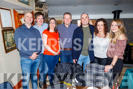 Enjoying the evening in the Brogue Inn on Friday<br /> L to r: Conor Reen, Padraig Brosnan, Claire O'Donnell, Mike Rohan, Eamon O'Sullivan, Lorraine Mulvihill and Lil Reynolds.