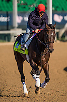 LOUISVILLE, KY - MAY 02: Gunnevera gallops at Churchill Downs on May 02, 2017 in Louisville, Kentucky. (Photo by Alex Evers/Eclipse Sportswire/Getty Images)