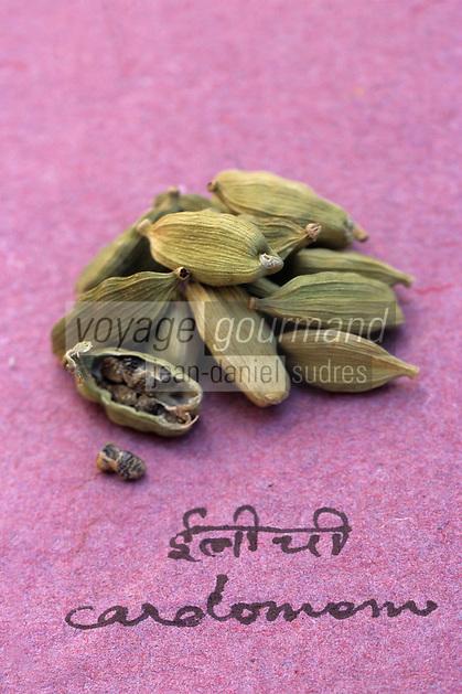 Asie/Inde/Maharashtra/Bombay : Les épices dans la cuisine indienne - Cardamome verte