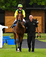 Winner of The Gift Of Sight Handicap  Silvington  ridden by Imogen Mathias and trained by Mark Loughnane is led into the Winner's enclosure during Evening Racing at Salisbury Racecourse on 3rd September 2019