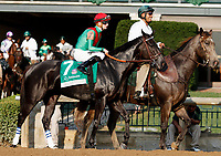 "October 07, 2018 : #7 Talk Veuve to Me and jockey Julien Leparoux in the 63rd running of The Juddmonte Spinster (Grade 1) $500,000 ""Win and You're In Breeders' Cup Distaff Division"" at Keeneland Race Course on October 07, 2018 in Lexington, KY.  Candice Chavez/ESW/CSM"