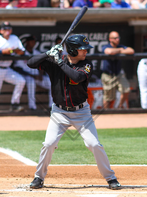 APPLETON - May 2015: Quad Cities River Bandits outfielder Ryan Bottger (9) during a game against the Wisconsin Timber Rattlers on May 2nd, 2015 at Fox Cities Stadium in Appleton, Wisconsin.  Quad Cities defeated Wisconsin 5-2.  (Brad Krause/Four Seam Images)