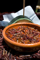 Chinicuiles en salsa, a worm that comes from the maguey/agave cactus. Hacienda Santiago Chimalpa, Apan Hidalgo, Mexico