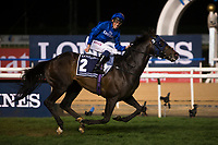 DUBAI,UNITED ARAB EMIRATES-MARCH 25: Jack Hobbs,ridden by William Buick,wins the Dubai Sheema Classic at Meydan Racecourse on March 25,2017 in Dubai,United Arab Emirates (Photo by Kaz Ishida/Eclipse Sportswire/Getty Images)